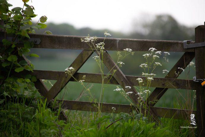 Close farm gate